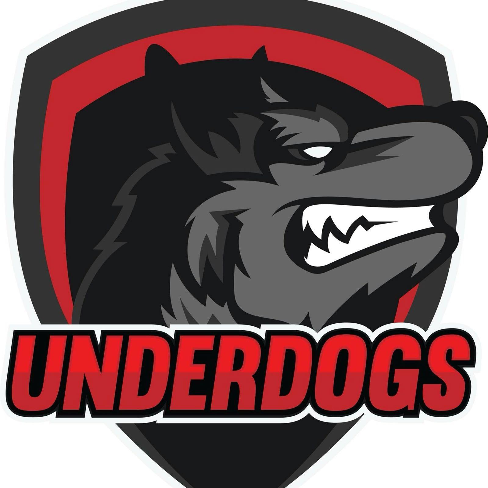 Underdogs Cricket Club